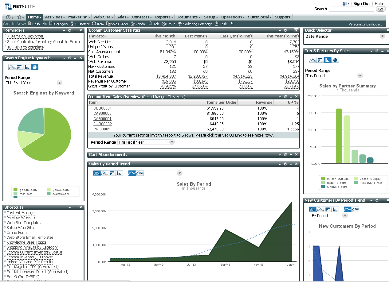 NetSuite Screenshot